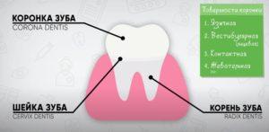 Диета - лечение зубов Дельта-Стом