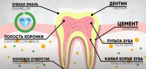 Профилактика зубов Дельта Стом
