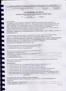 Оценка условий труда «Дельта-Стом» (1)