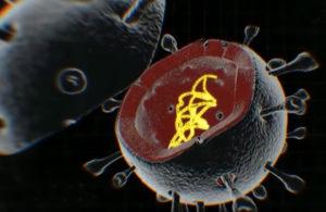 уничтожение короанавируса COVID-19
